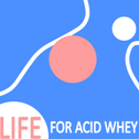LIFE WHEY red2